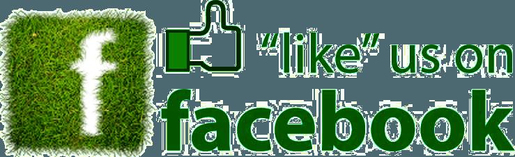 lcds-Facebook